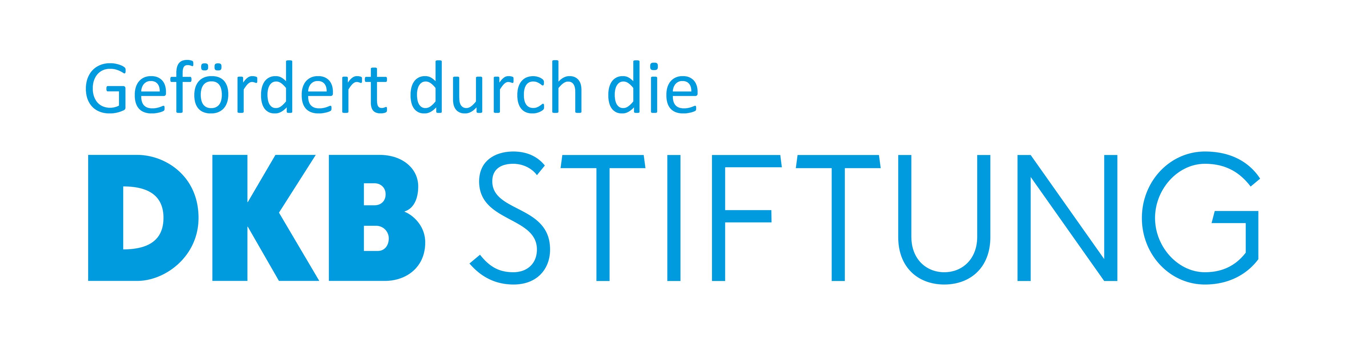 Logo DKB STIFTUNG neu